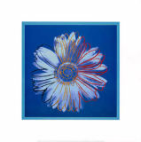 Daisy, c.1982 (blue on blue) of Andy Warhol